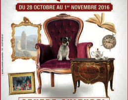 Salon des Antiquaires à Collioure 5