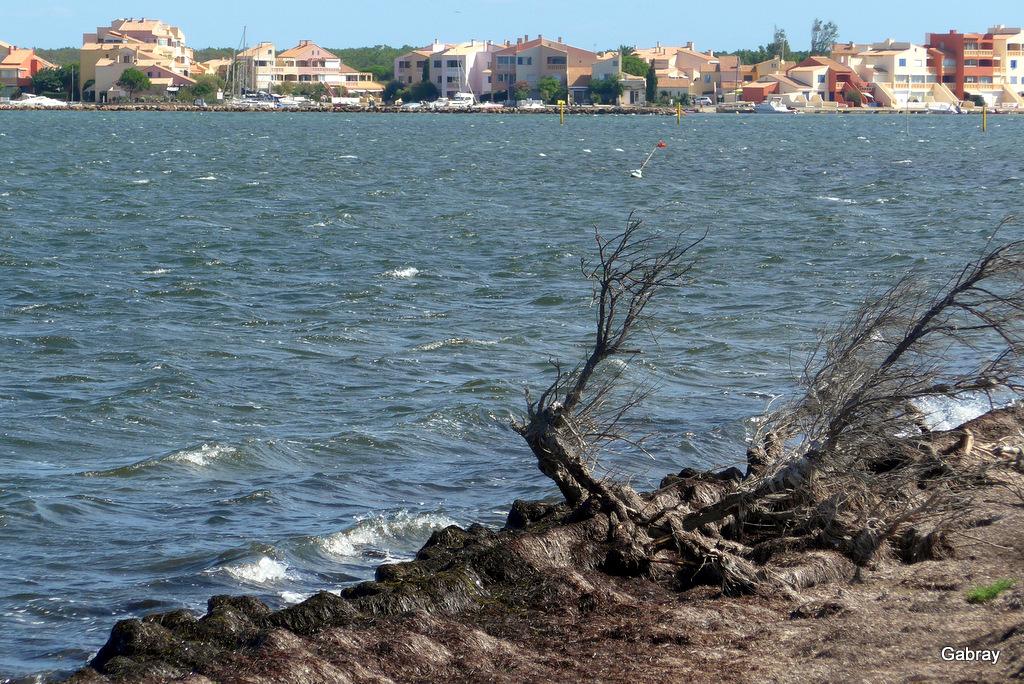 Lac Marin Barcarès